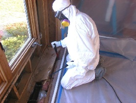removing mould from windows