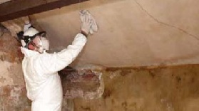 removing mould from walls